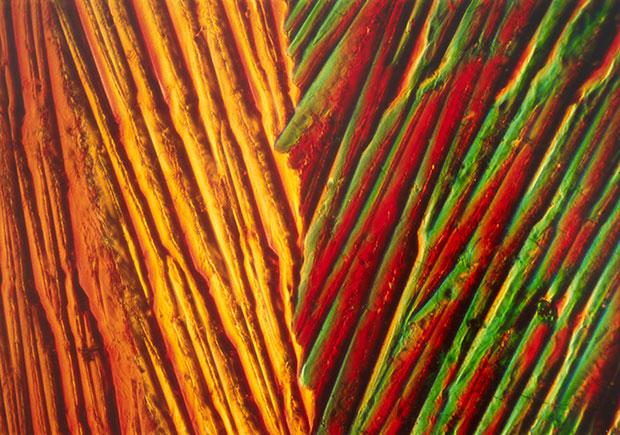 Eric H Olson - Kristallstruktur, 1981